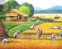 Painting Harvest Scenery in the Philippines.