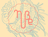 Nube Visual Identity