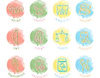 Twelve Zodiac Teeth - Teeth Project