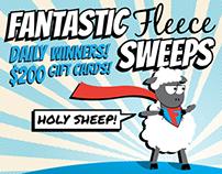 Fantastic Fleece Sweeps Email Campaign