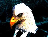 Holy Eagle