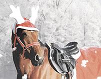 Horse magazine ad for HORZE