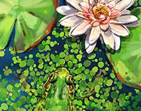 2013 Frog Folio
