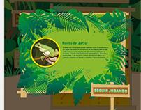 Museo de Ciencias Naturales Ameghino. Web design.