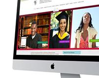 AVU Website Interface