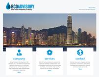 BCD Advisory – Website