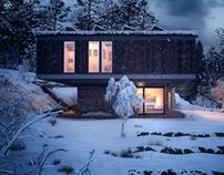 House Roofs - Architect Mathias Klotz