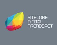 Sitecore Digital Trendspot 2013