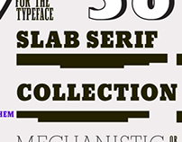 Slab Serif Collection by URW++