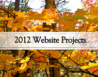 2012 Website Projects