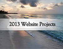 2013 Website Projects