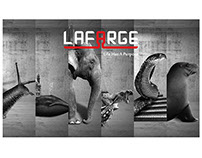 LAFARGE POSTERS CAMPAIGN