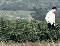 Domaines Dominique Piron / French Wine Producer