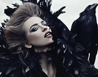 """Raven"" for DreamFactoryMagazine, November 2013"
