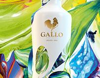 Gallo Azeite Novo 2013.2014