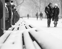 Snowy Park Benches in New York's Central Park