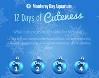 12 Days of Cuteness Social App