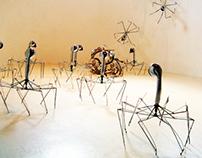 Arachnoids- Elxis lll 2013