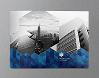 Blue Hexo Brochure
