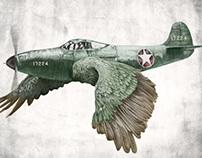 In which it's a bird. It's a plane.