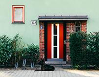 Bruno Taut's Berlin