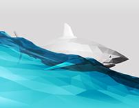 Shark's Surf
