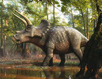 Triceratops in the forest