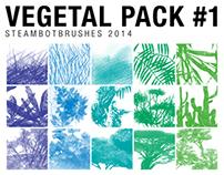 BRUSHES: Vegetal Pack #1