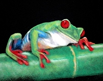 Art With Salt - Tree Frog