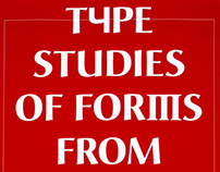 Type Studies of Forms from Different Cultural Spaces
