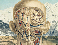 Body and Mind - Collage