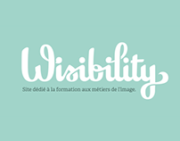 WIsibility Logo