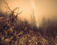 Mist-ification