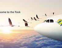 Rand Merchant Bank - Air Namibia