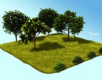 Nature Visualization