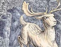 Ovid's Metamorphoses Illustrations