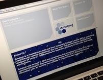 Amalyst Website