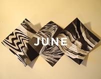 Significant Nonsense: June