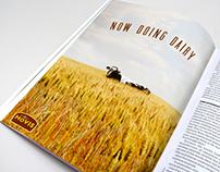 HOVIS Print Campaign