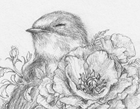 Drawings 2013 | Blossoming Swallow