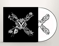 The XX CD Cover Design