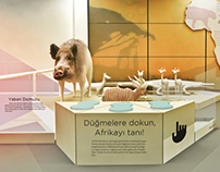 İTÜ Ufuk Güldemir Wild Life Museum, Exhibition Concept