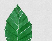 the Happy Tree project - Illustrated leaves