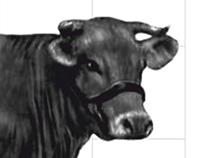 Electric milk separator brochure