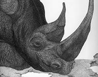Requiem To The Rhino
