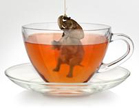 Elephant In A Teacup