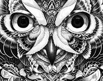 Owl Part 5