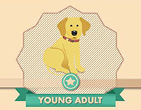 Nutro Young Adult Dog Food | Infographic