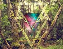 Forest Portal v06 | Inverted Triangle Series