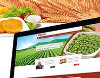 Kerevitas Web Site
